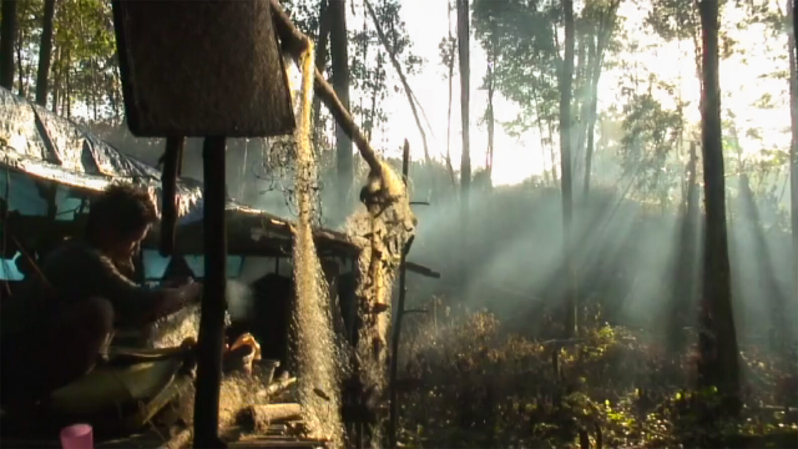 Indigenous Indonesian homestead