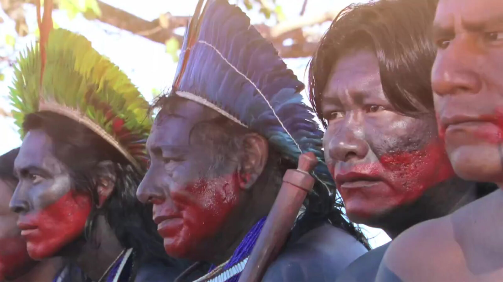 Amazonian peoples protecting forest
