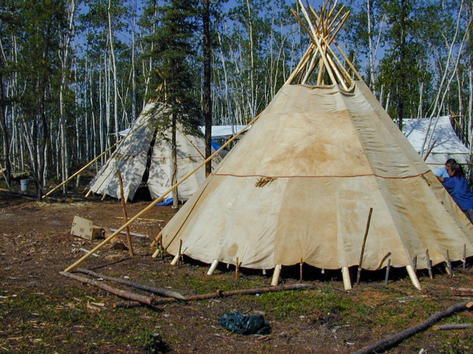 Tip-shape shelter with covering of caribou skin